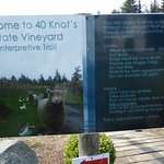 40 Knots Winery Foto