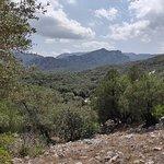Foto di Villaggio Nuragico Sa Sedda E Sos Carros