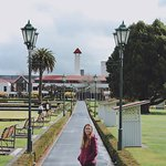 Foto Museum Rotorua