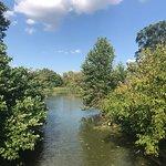 Foto de Forest Park