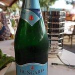 ハンガリー産スパークリングワイン
