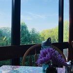 Twin Falls Lodge Foto