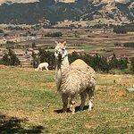 Bilde fra Adventure Heart Peru
