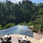 Hanging Gardens of Bali Picture