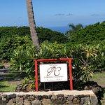صورة فوتوغرافية لـ The Original Hawaiian Chocolate Factory