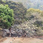 Shri Surya Pahar ( Sun temple) Assam Distt: Goalpara