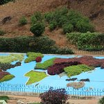 World map made of colourful shrubs