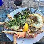 Massive lobster!