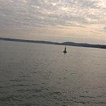 sea at torquay