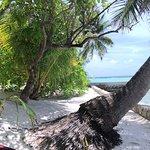Ảnh về Ellaidhoo Maldives by Cinnamon
