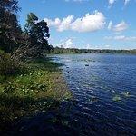 Billede af Lake Lotus Nature Park