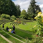 Amphitheatre in Rose Garden