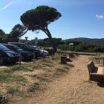 Photo de Parco di Rimigliano