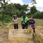 Bild från Happy Bike Bali Cycling Tour
