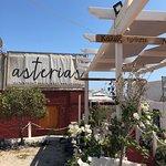 Photo of Asterias