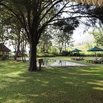 Ceylon Tea Trails - Relais & Chateaux Photo