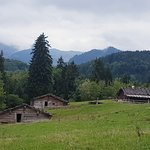 Alpine section