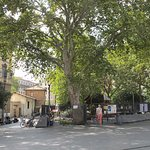 Piazza San Cosimato - playground