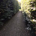 Photo in Levens Hall Gardens
