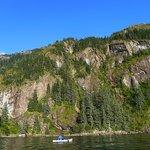 Orca Island Cabins صورة فوتوغرافية