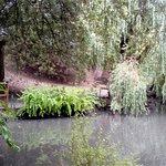 Peasholm Park - Lake
