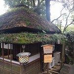 صورة فوتوغرافية لـ Kinsui