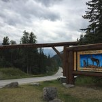 Entrance to Bow Valley Parkway