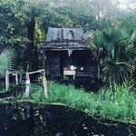 Foto de Cajun Pride Swamp Tours