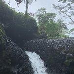 Φωτογραφία: Back Of The Ute Samoa