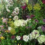 ภาพถ่ายของ Eggleston Hall Gardens