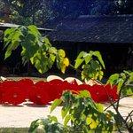 ภาพถ่ายของ หมู่บ้านทำร่ม บ่อสร้าง
