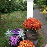 Fall mums welcome guests in October at Centennial House