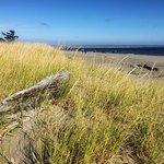 Ocean Shores North Jetty照片