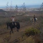 Фотография Horse Riding Adventures in Tenerife