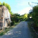 Snímek Camping l'Oasis de Provence