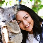 I fell in love with this koala!