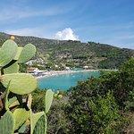 Photo de Spiaggia di Cavoli