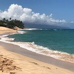 Discover Hawaii Toursの写真