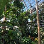 Foto de United States Botanic Garden