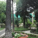 Photo of Orto Botanico dell'Universita di Catania