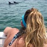 Photo de Dolphin Safari