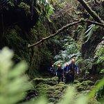 Tobogã Azores Foto