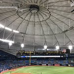 Photo de Tropicana Field