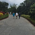 Dallas Arboretum & Botanical Gardens Photo