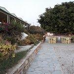 Tavoli sotto giardino di alberi alla sera luci soffuse e romantiche