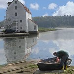 Foto de Woodbridge Tide Mill