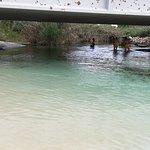 Photo de Riserva Naturale della Foce del Fiume Chidro