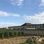 Domaine du Château de Chassagne-Montrachet照片