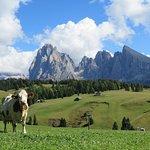 Photo of Funivia Ortisei - Alpe di Siusi