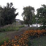 Foto van Hiroshimapark